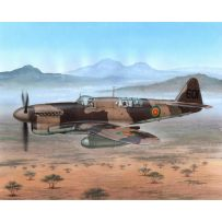 SPECIAL HOBBY 48151 FAREY FIREFLY FR :MK.I FOREIGN POST WAR 1/48