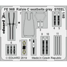 Rafale C seatbelts grey Steel 1/48