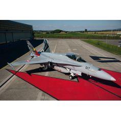 F/A-18 Hornet Suisse/Australie 1/72