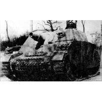 Sturmpanzer Iv Brummbar 1/100