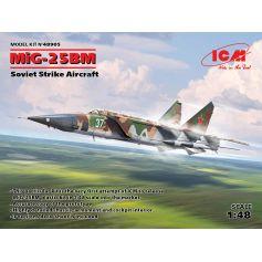 MiG-25 BM 1/48