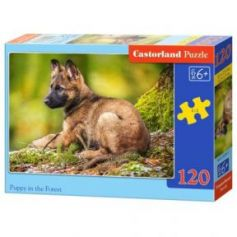 Puppy in the Forest Puzzle 120