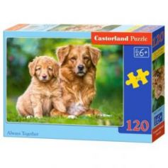 Always Together Puzzle 120