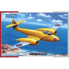 Gloster Meteor Mk.4 (World Speed Record) 1/72
