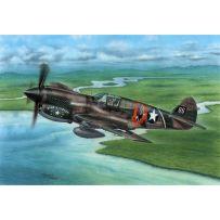 P-40E Warhawk Claws and Teeth 1/72