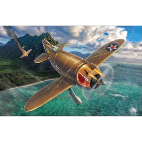 Granville P-45B Bee Killer (What if..?) 1/48