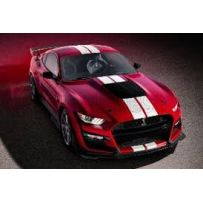 Ford Mustang GT500 Fast Track Racing Red 1/18