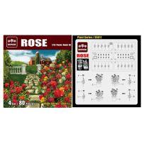 Ensemble de roses 1/35