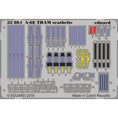 A-6e Tram Seatbelts 1/32