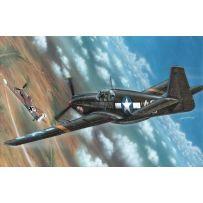 P-51 Mustang-Photo Version 1/72