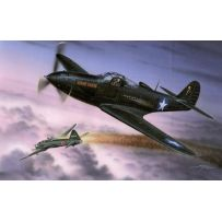 P-39Q MAKIN AIRACOBRAS 1/32