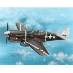 P-40f Warhawk 1/72