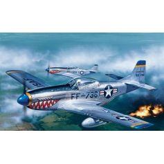 P - 51D Mustang 1/72